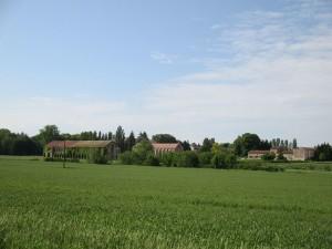 L'Abbaye de Citeaux